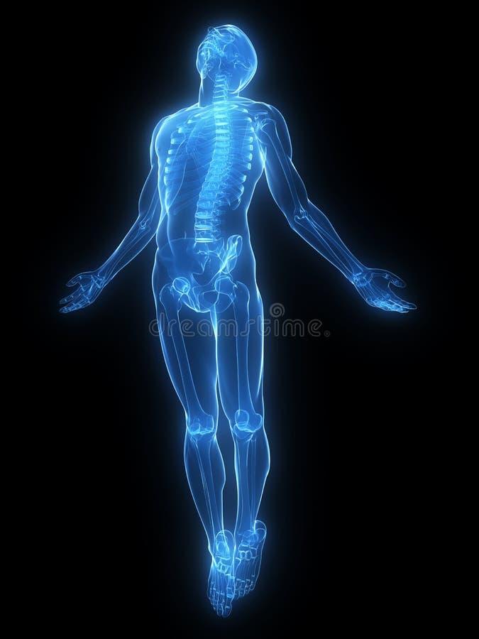 луч поднимая x тела бесплатная иллюстрация