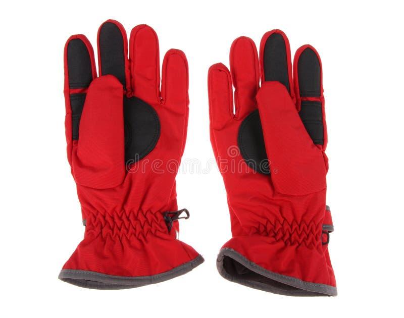 лыжа красного цвета перчаток стоковое изображение rf