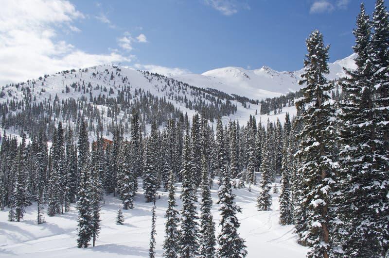 лыжа курорта яшмы Канады стоковые изображения rf