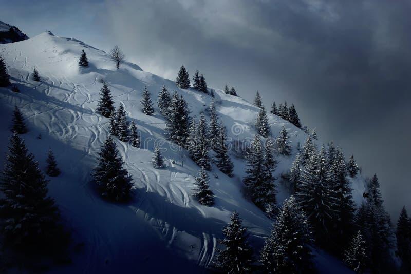 лыжа полей стоковые фотографии rf