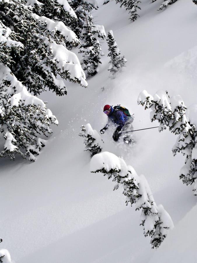 лыжа порошка стоковые изображения rf