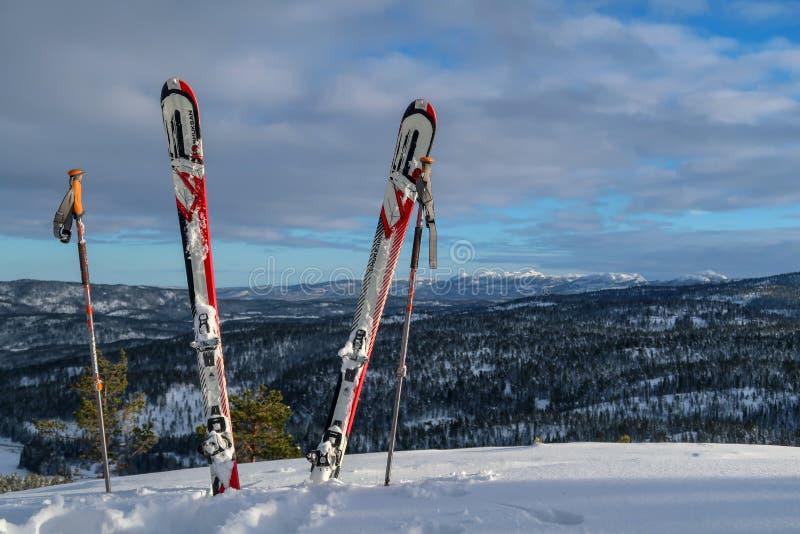 Лыжа путешествуя лыжи и поляки стоковые фотографии rf