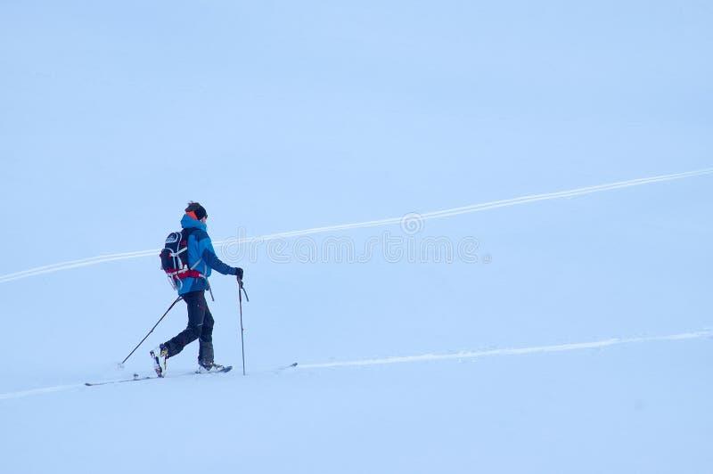 Лыжа Freeride в Transylvanian Альп стоковые фото