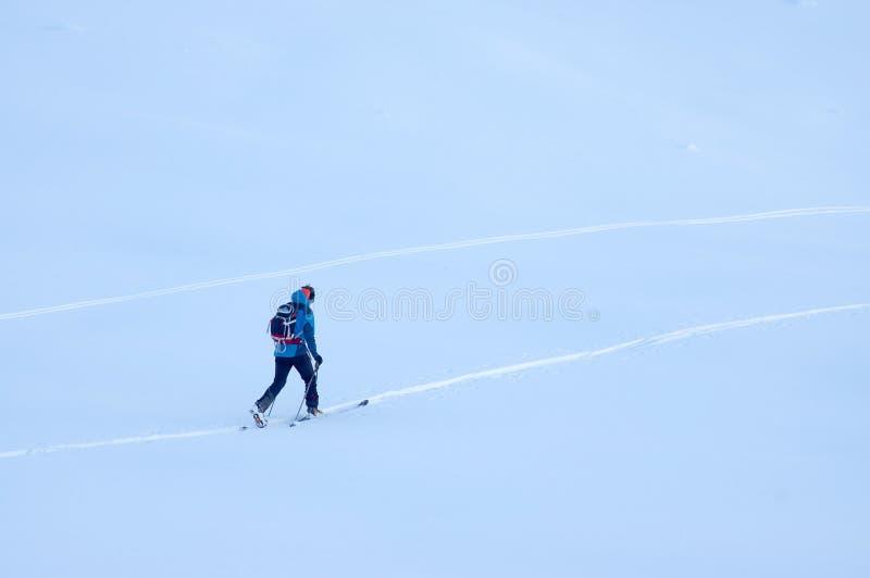 Лыжа Freeride в Transylvanian Альп стоковая фотография