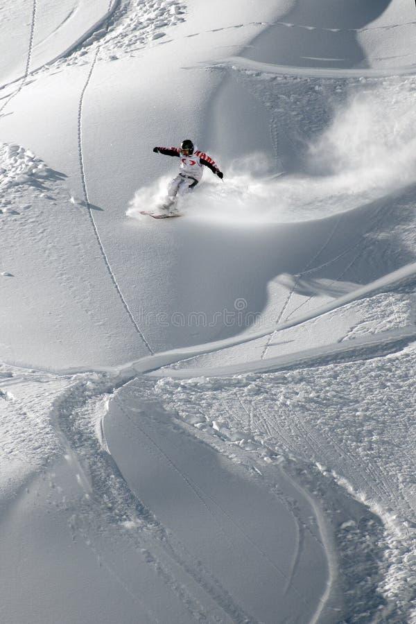 Лыжа Freeride стоковое изображение rf