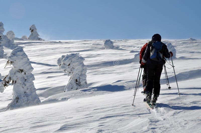 Лыжник Backcountry путешествуя в красивых горах зимы стоковая фотография rf
