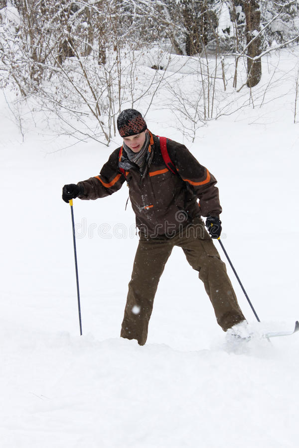 лыжник dilettante страны перекрестный стоковое изображение