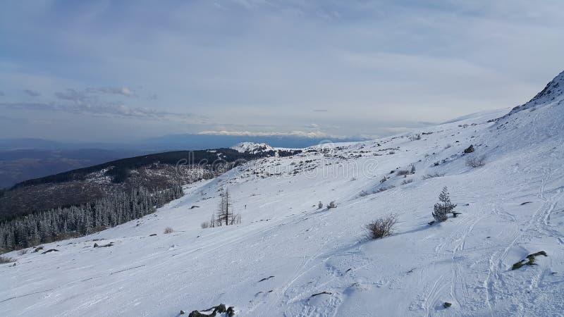 Лыжный курорт Vitosha стоковое изображение