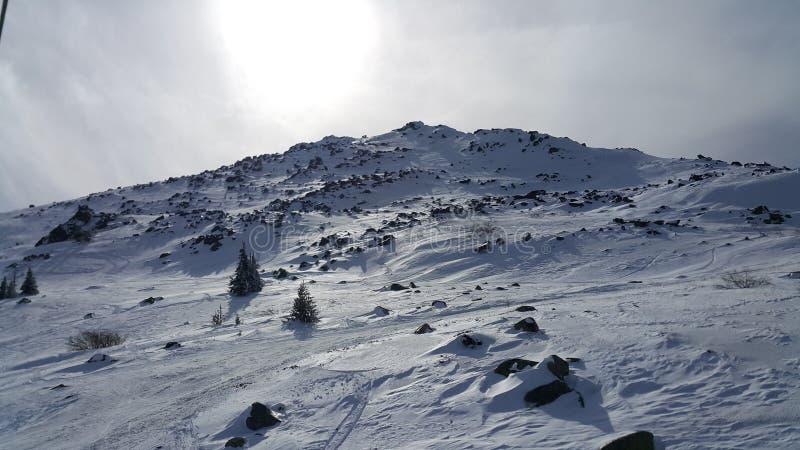 Лыжный курорт Vitosha стоковые фотографии rf