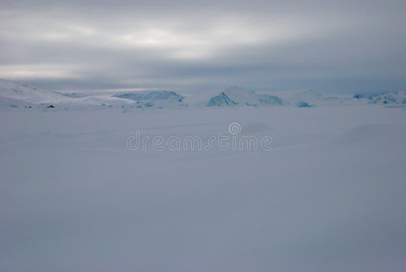 льдед Гренландии поля стоковая фотография
