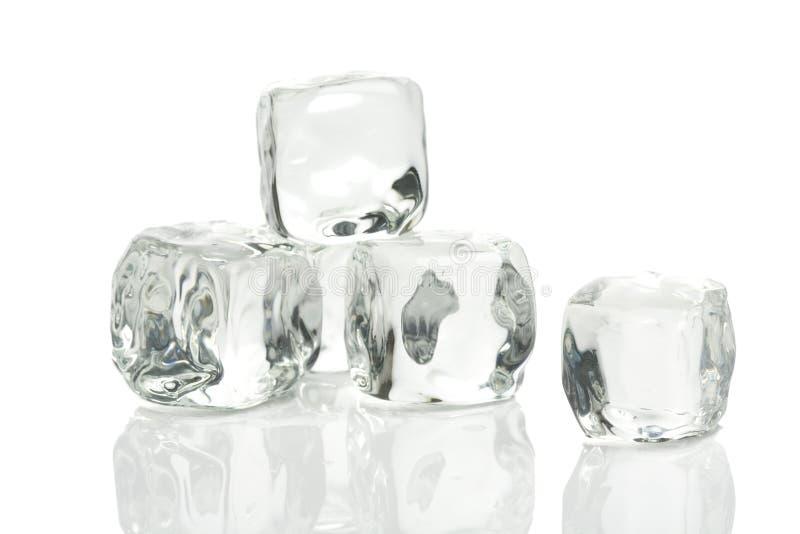 льдед кубиков стоковое фото