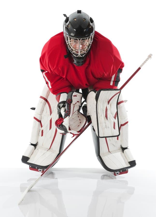 льдед хоккея вратаря стоковая фотография