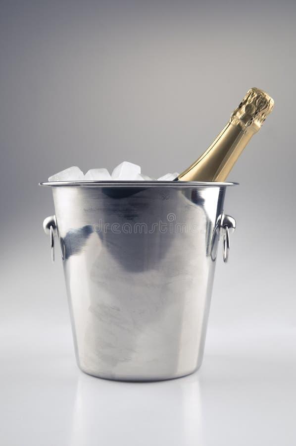 льдед шампанского ведра бутылки стоковое изображение rf