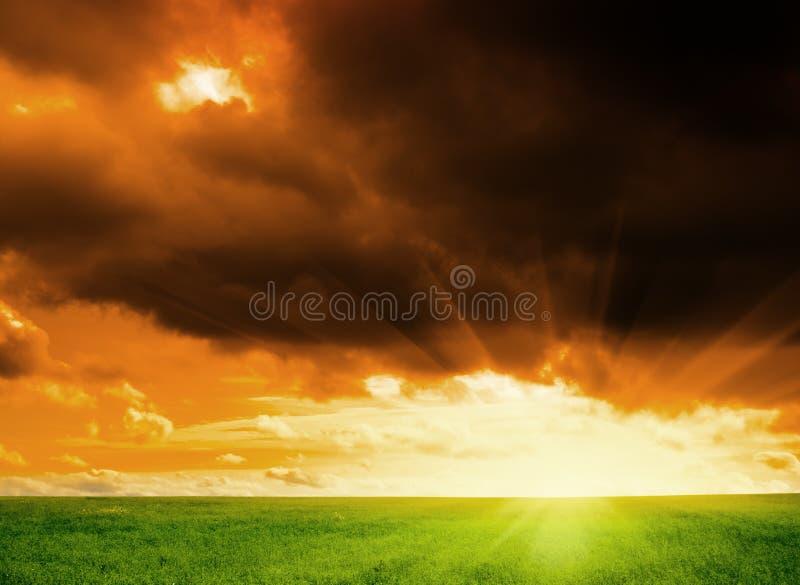 Download льнен поля стоковое фото. изображение насчитывающей farming - 6868890