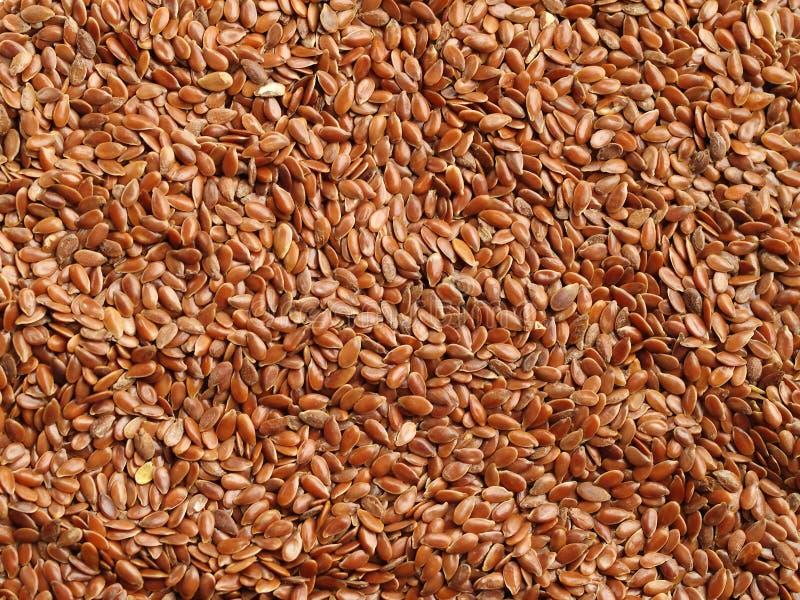 льняное семя flaxseed предпосылки коричневое стоковые изображения rf