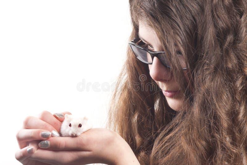 любимчик хомяка девушки стоковая фотография