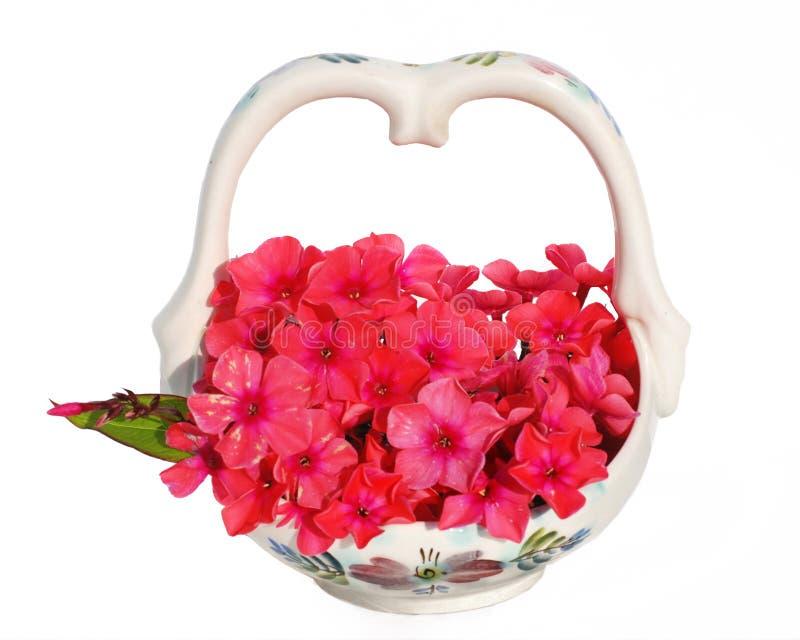 любимые цветки стоковая фотография rf