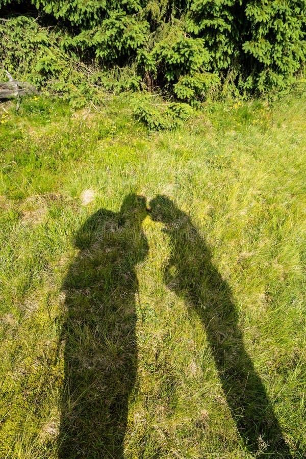 Любовная история в зеленом цвете стоковое изображение rf