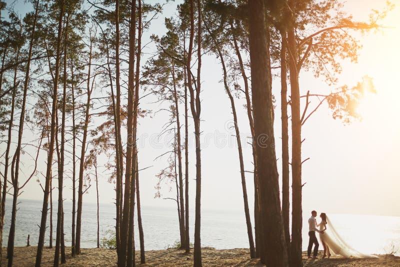 Любовники Photoshoot в платье свадьбы на пляже около моря стоковое фото