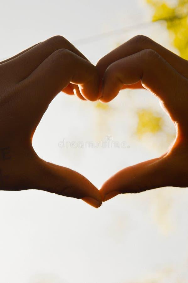 Любовь стоковая фотография rf