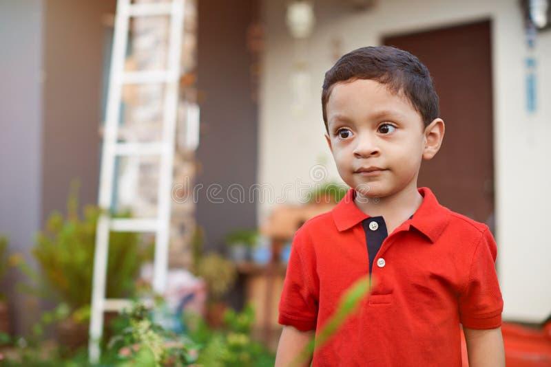 Любознательный маленький ребенк мальчика латиноамериканца стоковые фотографии rf