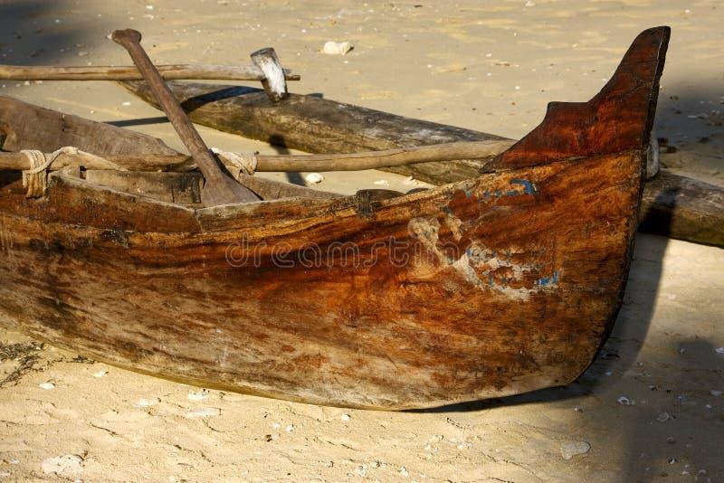 Любопытный весло   и береговая линия стоковое фото