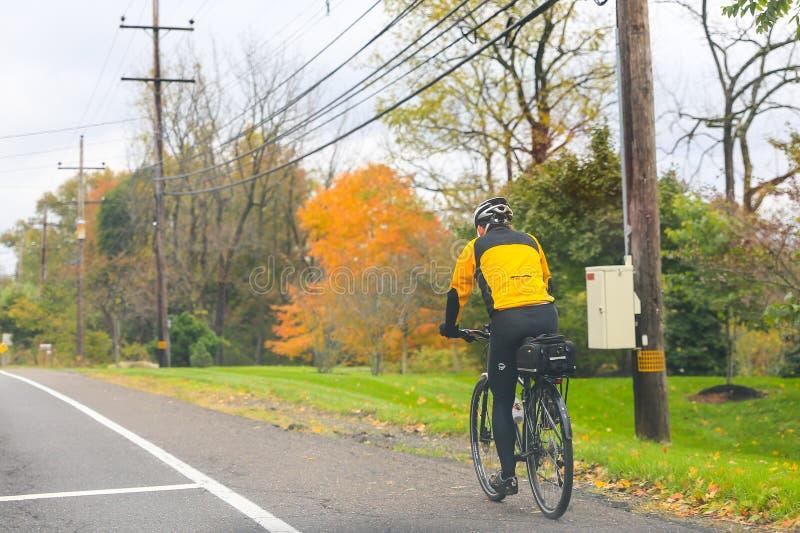 Люди ехать велосипед на дороге стоковые изображения rf