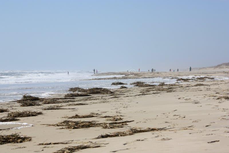 Люди идя на пляж в расстоянии стоковое фото