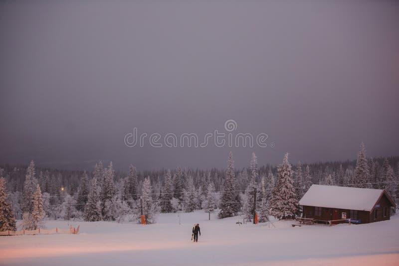 Люди катаясь на лыжах в горах Активный зимний отдых Спорт, друзья и изумительная природа стоковая фотография