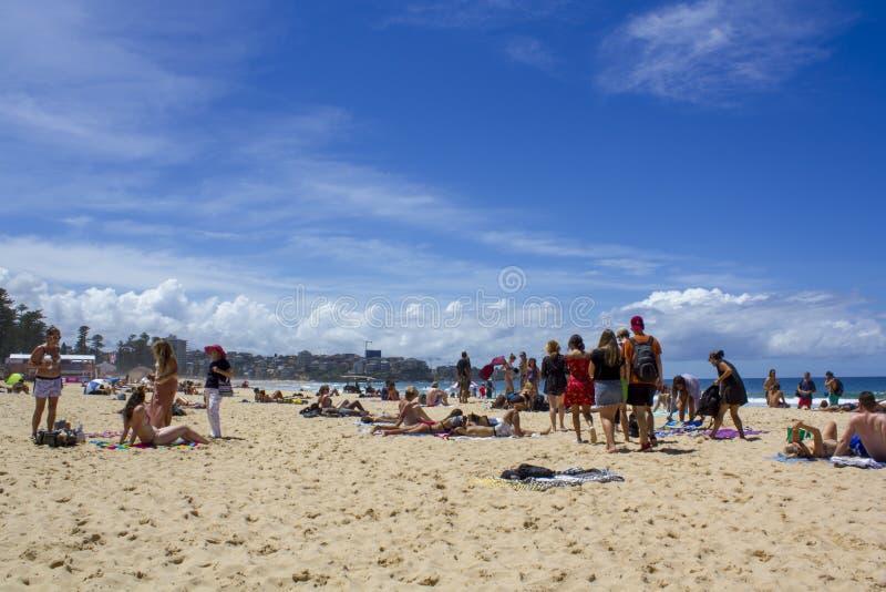 Люди на австралийском пляже с городом на предпосылке стоковое фото