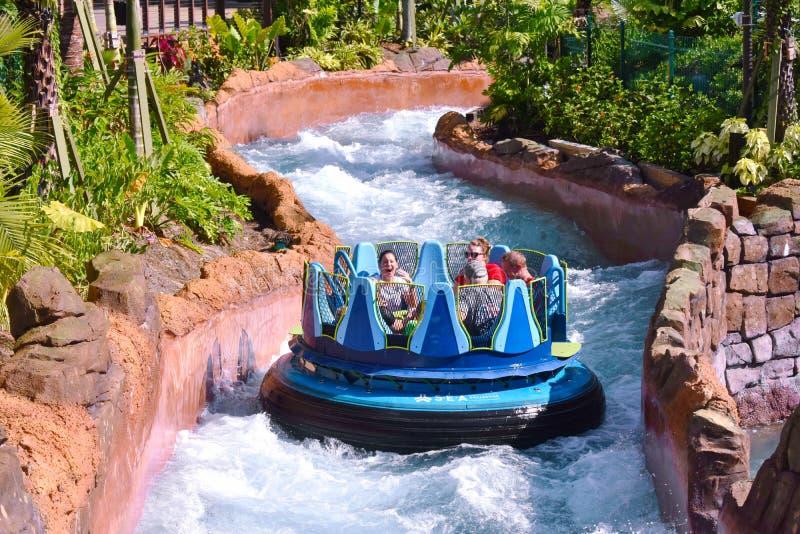 Люди на борту сплоток, пересекая речные пороги реки на тематическом парке Seaworld стоковые изображения rf