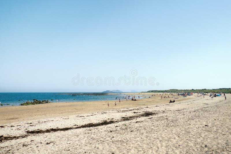 Люди ослабляют на пляже стоковые фото