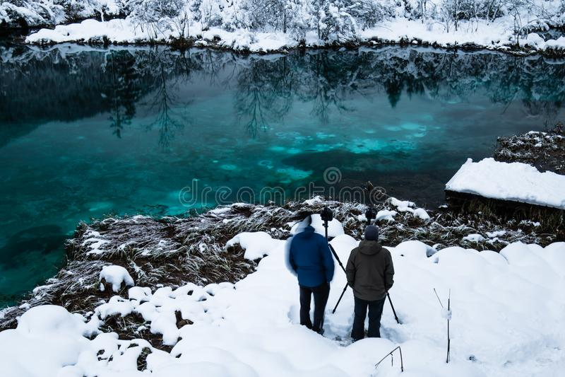 Люди принимая фото на красивом изумрудно-зеленом zelenci в пейзаже зимы, Kranjska Gora озера, Словении стоковые фото
