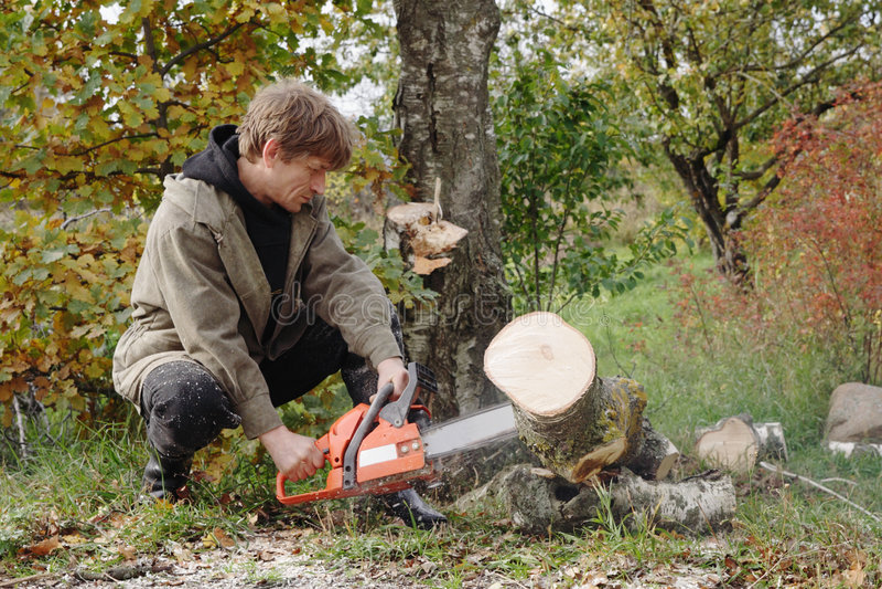 люди chainsaw стоковая фотография rf