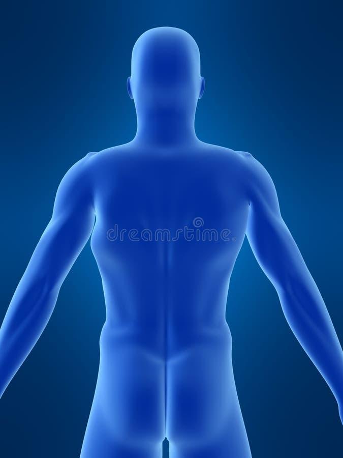 людская форма иллюстрация штока