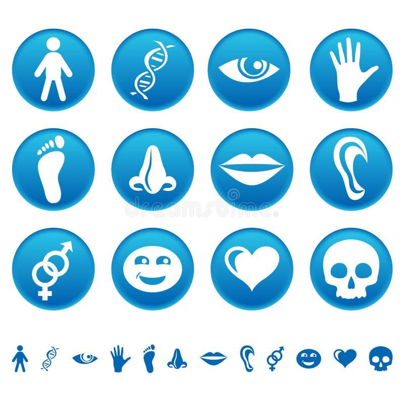 людские иконы иллюстрация вектора