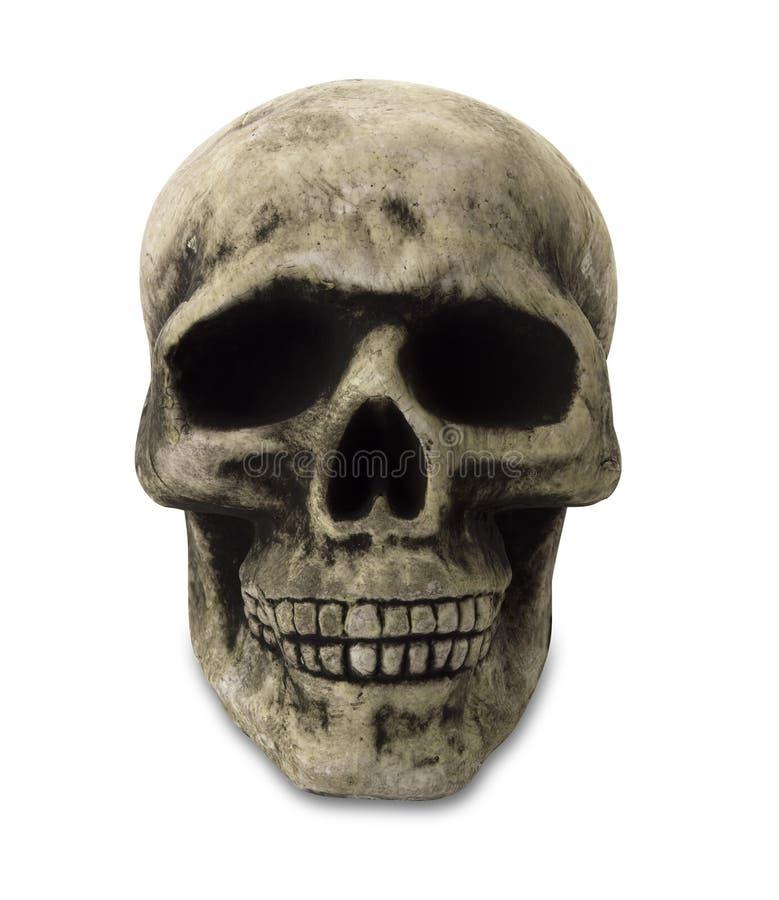 людской череп путя стоковая фотография