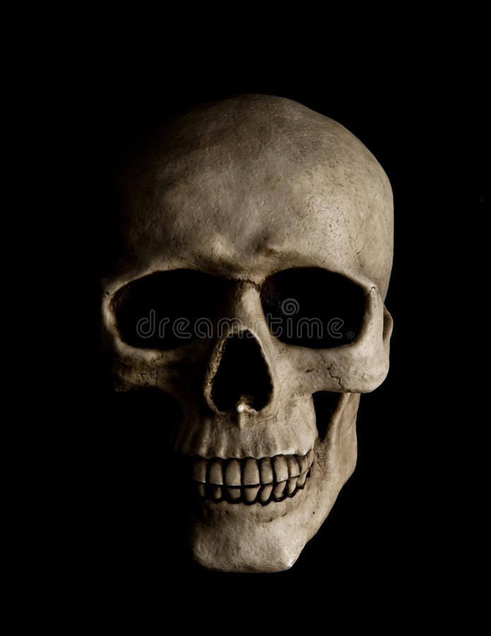людской череп стоковое изображение