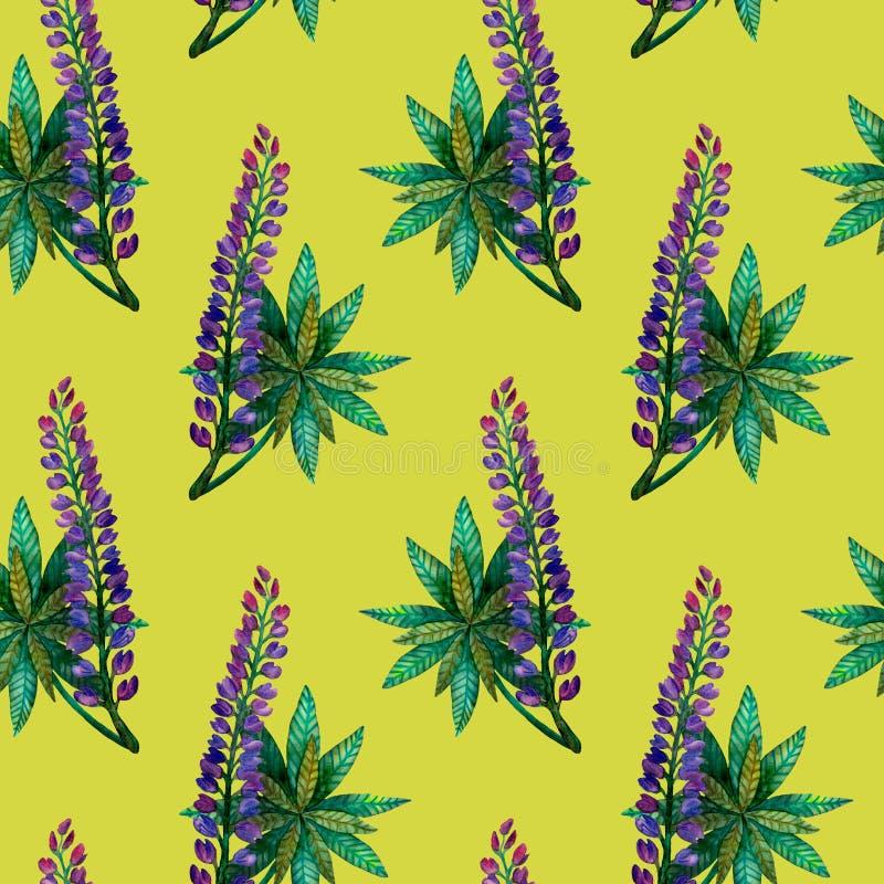Люпины акварели Безшовная яркая красочная картина цветка лета на оливке стоковое изображение