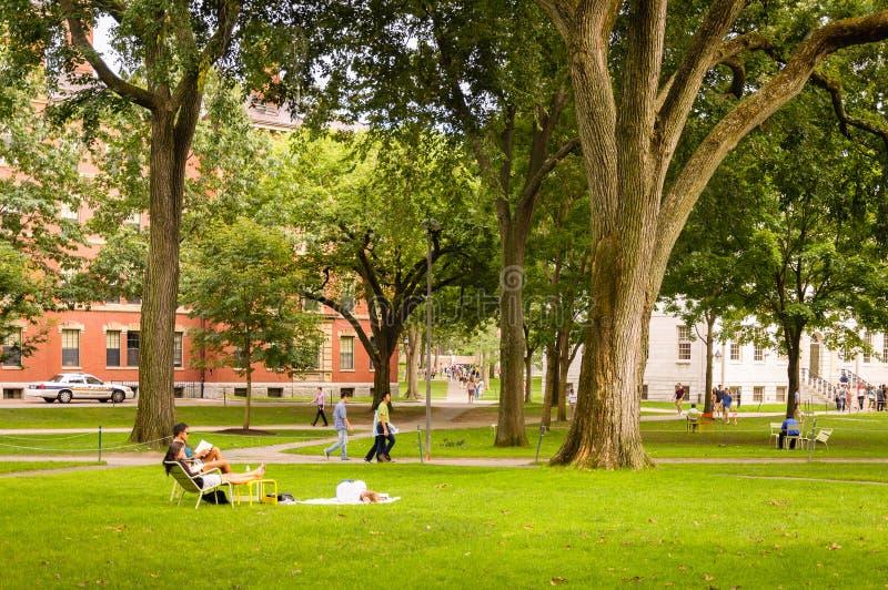 Люди в дворе Гарварда, кампус Гарвардского университета стоковое фото rf