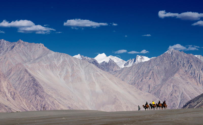 Люди ехать верблюд в пустыне и горе стоковые фотографии rf