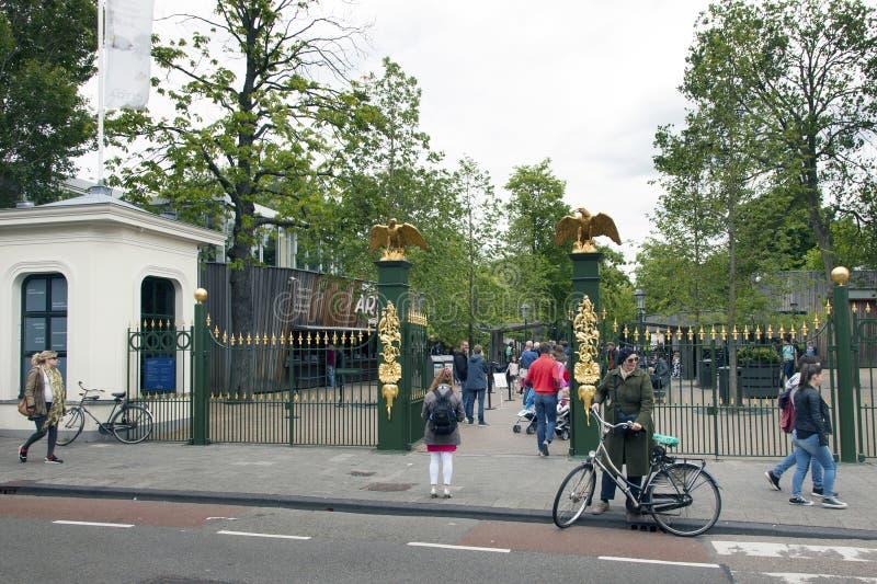 Люди идут к зоопарку artis Амстердама стоковое фото rf