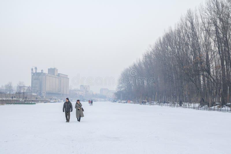 Люди идя на замороженный Tamis реки в Pancevo, Сербии должной к исключительно холоду над Балканами стоковые фото