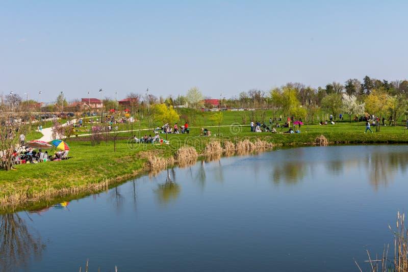 Люди ослабляя в парке на солнечный весенний день стоковые изображения rf