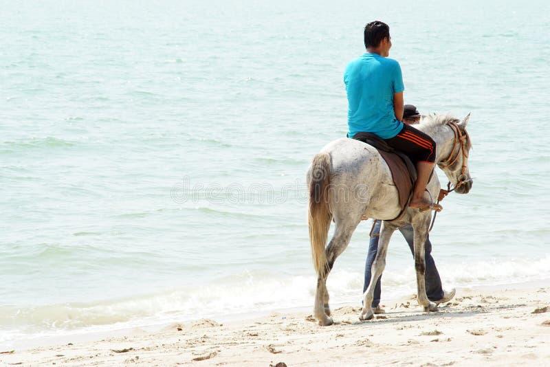 Люди & лошади стоковое изображение