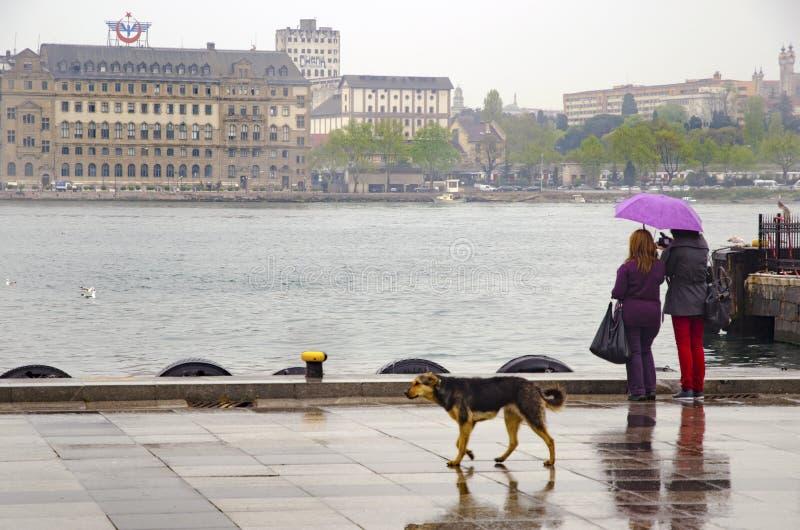 Люди пристани парохода Стамбула идя в дождь стоковое фото
