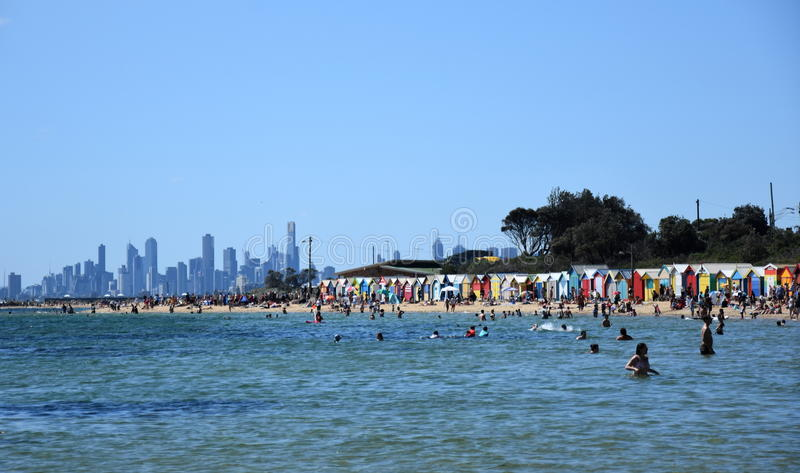 Люди плавая на пляже Брайтона стоковое изображение rf