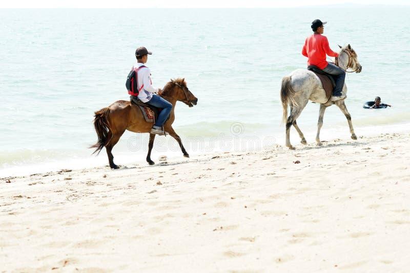 Люди, пляж и лошади стоковое изображение