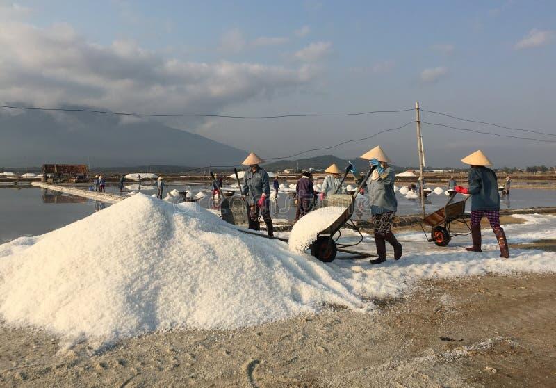 Люди работая на поле соли стоковое изображение