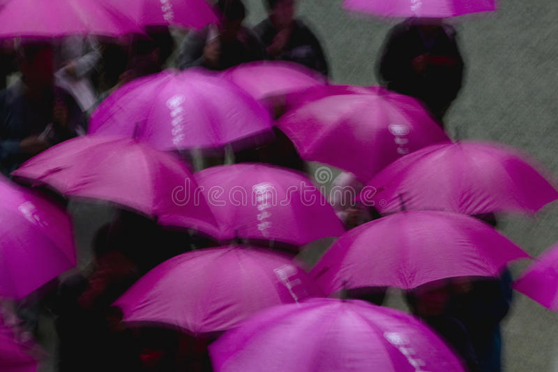 Люди синтоистской святыни Kapan Nikko Tosho-gu под фиолетовыми зонтиками повысили взгляд стоковое изображение